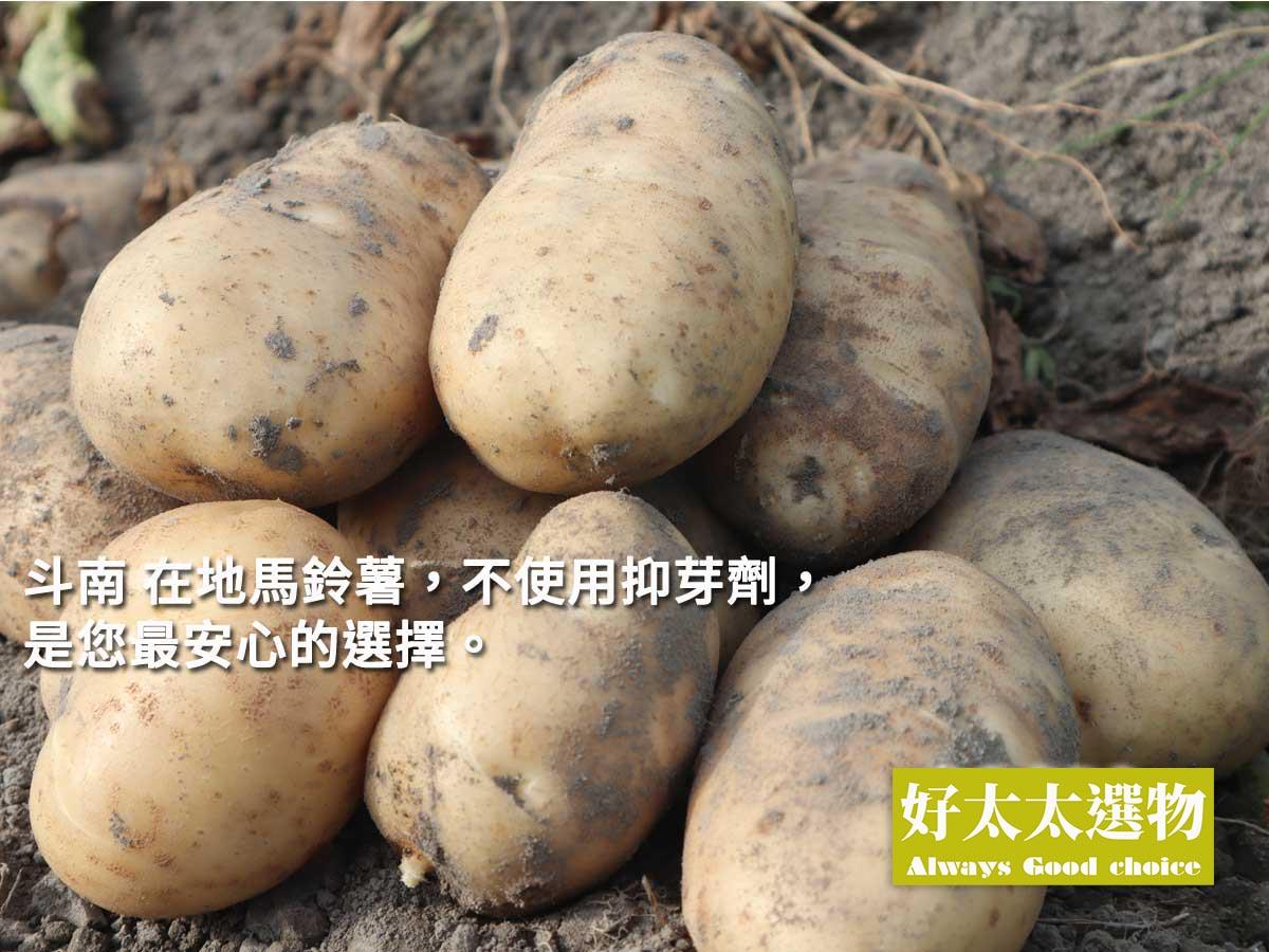 ▲雲林是全台馬鈴薯產量第一的產地,尤其斗南地區,品質也是數一數二!