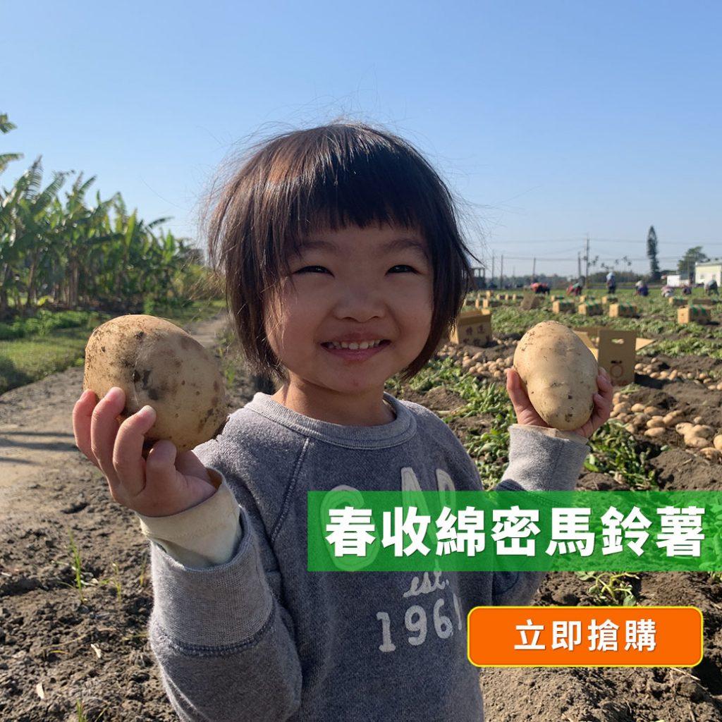 2021春季菲比寶寶在田裡撿馬鈴薯